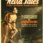 Weird Tales Hermannstadt cover